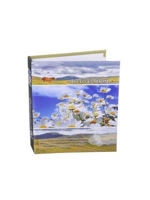 Фотоальбом на 200 фото 10х15см, 17,5х23см, бумага, пластик, KONONO. Цвет: белый