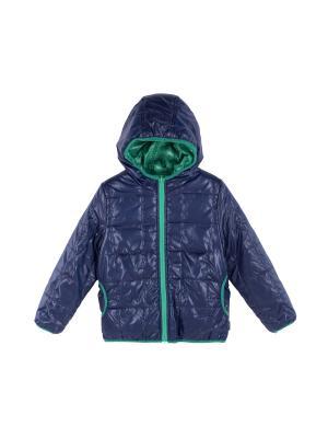 Куртка Coccodrillo. Цвет: синий, зеленый