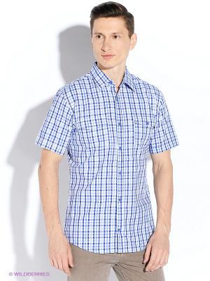 Рубашка Maestro. Цвет: синий, белый