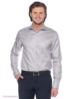 Рубашка ARROW. Цвет: серый, белый