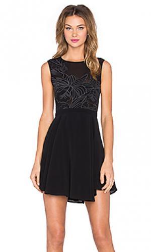 Платье wildfire Lovers + Friends. Цвет: черный