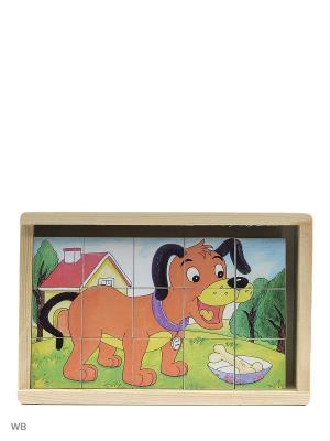 Кубики Собачка Винтик и Шпунтик. Цвет: желтый, зеленый