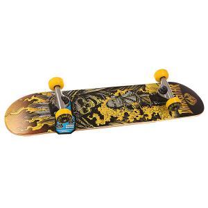 Скейтборд в сборе детский  S6 Torch Youth Mic Yellow 28.5 x 6.75 (17.1 см) Darkstar. Цвет: мультиколор