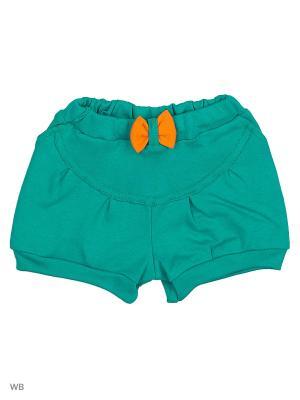 Шорты Genstaro Baby. Цвет: зеленый, оранжевый