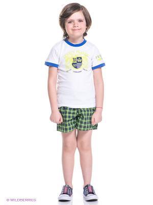 Шорты CHECK SH ML Adidas. Цвет: черный, зеленый