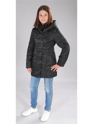Куртка Милашка Сьюзи. Цвет: черный