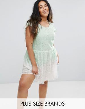 Diya Короткое приталенное платье из кружева. Цвет: зеленый