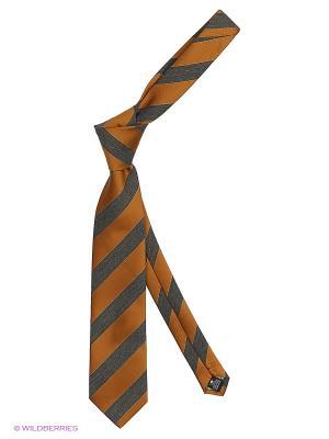 Галстук Alex DANDY. Цвет: оранжевый, серый