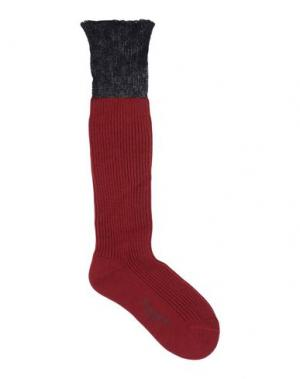 Носки DSQUARED2. Цвет: красно-коричневый