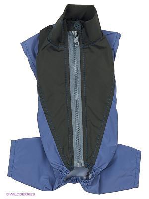 Дождевик холодный (Чихуахуа), ТУЗИК. Цвет: синий