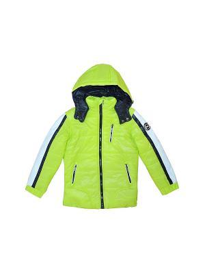 Куртка BORELLI. Цвет: салатовый