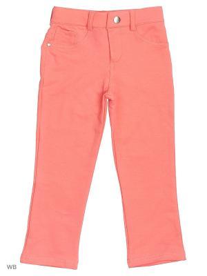 Трикотажные брюки Modis. Цвет: лиловый, красный