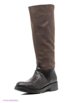 Сапоги LOGAN. Цвет: коричневый