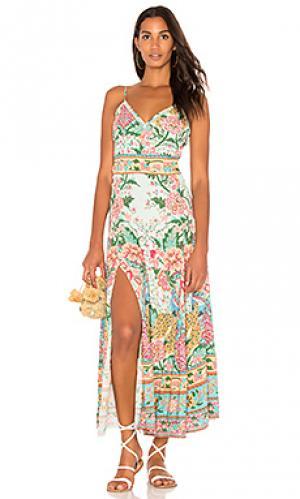Платье со шлейками lotus Spell & The Gypsy Collective. Цвет: зеленый