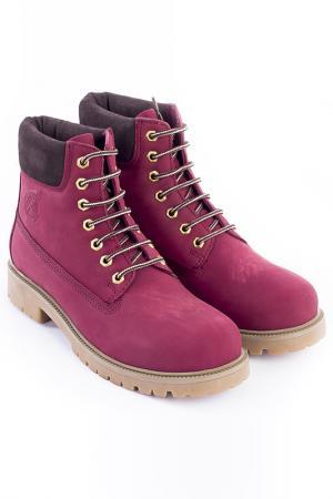 Ботинки POLO CLUB С.H.A.. Цвет: розовый