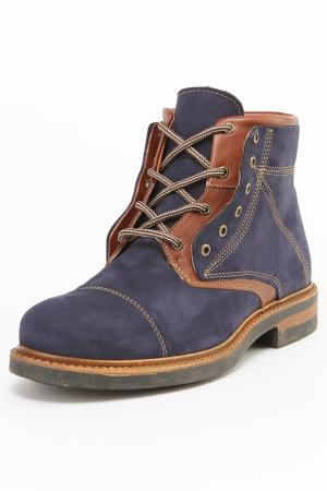 Ботинки Etor. Цвет: синий