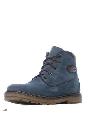 Ботинки ZET. Цвет: синий