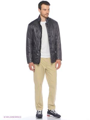 Куртка Stayer. Цвет: темно-серый