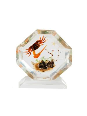 Настольное декоративное украшение Крабик Русские подарки. Цвет: светло-коричневый, прозрачный, оранжевый, белый
