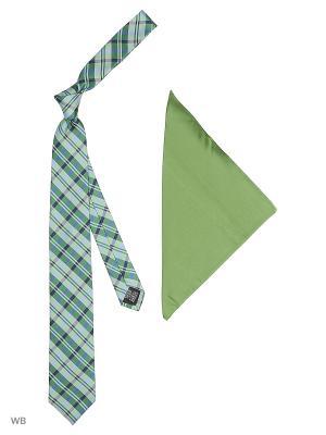 Галстук J Ploenes. Цвет: зеленый