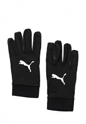 Перчатки футбольные Puma. Цвет: черный