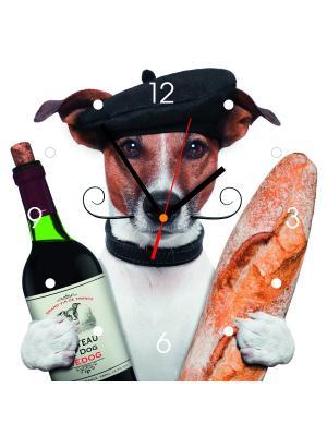 Настенные часы Hund mit Wein Contento. Цвет: черный, белый, горчичный