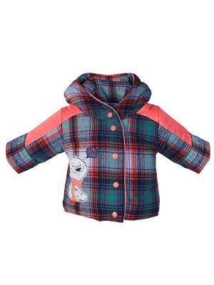 Куртка Бимоша. Цвет: коралловый