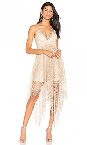 Кружевное платье elan Acler. Цвет: румянец