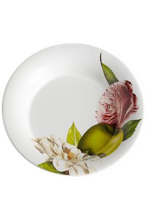 Тарелка суповая 24 см Ceramiche Viva. Цвет: мультицвет