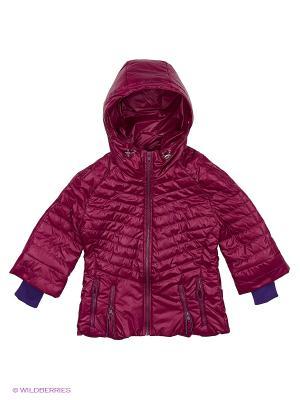 Куртка Пралеска. Цвет: бордовый