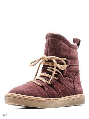 Ботинки Tamaris. Цвет: фиолетовый