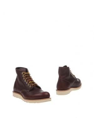 Полусапоги и высокие ботинки RED WING SHOES. Цвет: какао