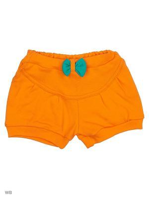 Шорты Genstaro Baby. Цвет: зеленый, оранжевый, красный
