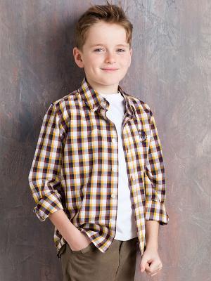 Рубашка Viaggio bambini. Цвет: коричневый