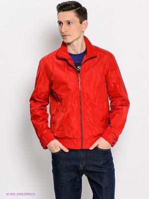Куртка SAVAGE. Цвет: красный