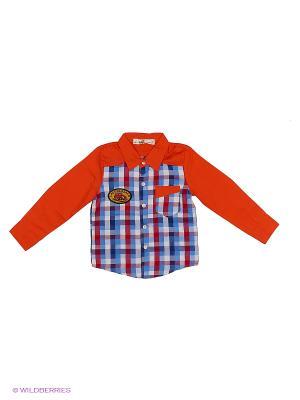 Рубашка Sago Kids i Ant Domain. Цвет: коралловый, белый, голубой