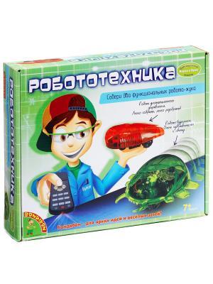 Французские опыты Науки с Буки Bondibon (2 эксперимента) Робототехника  , арт. 7090. Цвет: красный, салатовый