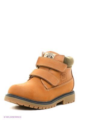 Ботинки Flamingo. Цвет: коричневый