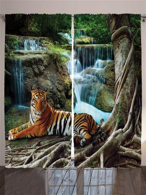 Комплект фотоштор для гостиной Тигр у водопада, плотность ткани 175 г/кв.м, 290*265 см Magic Lady. Цвет: бежевый, белый, желтый, оранжевый, серо-голубой, серо-зеленый, серый, синий, черный