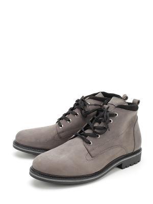 Ботинки BERTEN. Цвет: серый