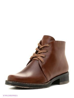 Ботинки BELWEST. Цвет: рыжий