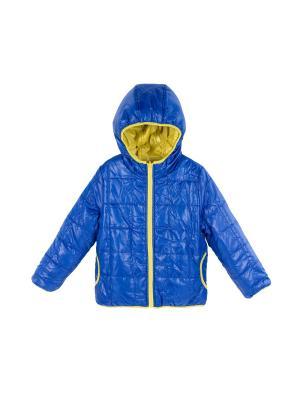 Куртка Coccodrillo. Цвет: синий, желтый