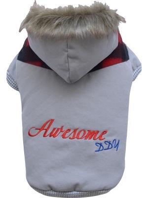 Куртка Doggy Dolly. Цвет: серый