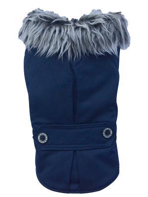 Пальто Doggy Dolly. Цвет: синий