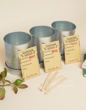 Temerity Jones Подарочный набор для выращивания кухонных трав. Цвет: мульти