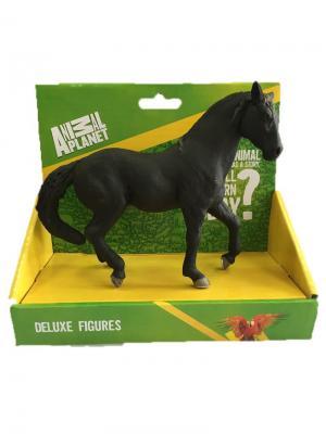 Фигурка Mojo (Animal Planet) в индивидуальной упаковке - Андалузская лошадь черная (XL). Цвет: черный