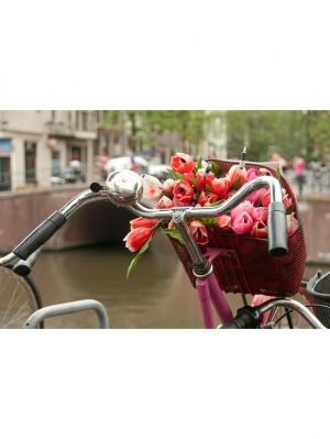 Картина Амстердам велосипед цветы Ecoramka. Цвет: светло-коричневый, малиновый