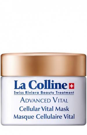 Восстанавливающая маска с клеточным комплексом La Colline. Цвет: бесцветный