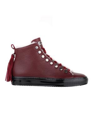 Ботинки BARRACUDA. Цвет: темно-бордовый