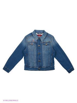 Куртка BOSCO. Цвет: синий